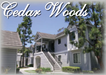 Cedar Woods Ad Image